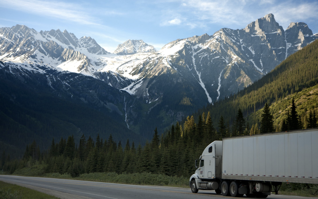 Non-Asset Truck Brokerage – True / False Issues
